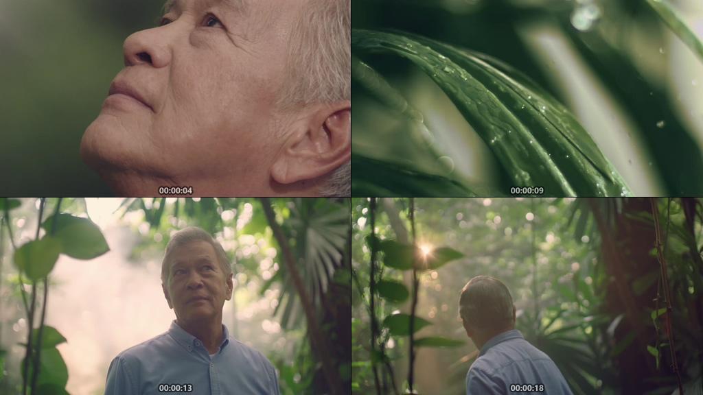 走在森林的老人聆听大自然的声音