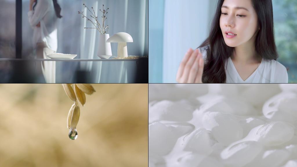 大米水稻视频素材