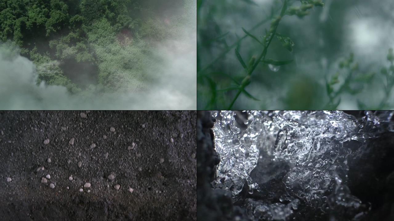 及时雨滋润土壤视频素材