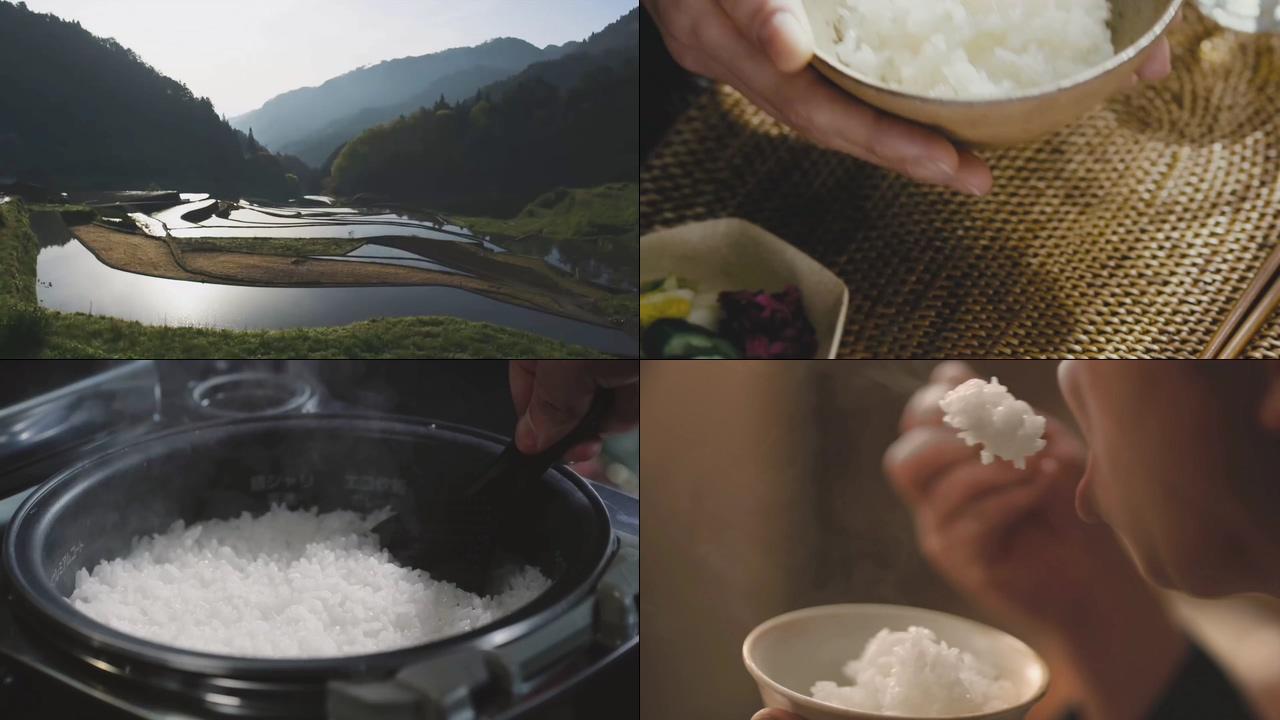 大白米饭视频素材下载