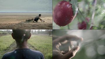 民以食为天视频素材