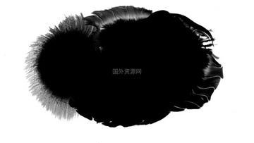 水墨通道视频素材001