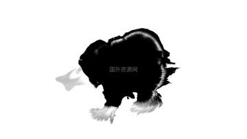 水墨通道视频素材008