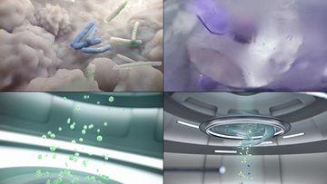 细胞分裂动画视频素材