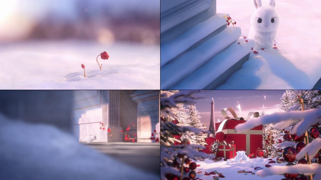可爱的小白兔花开礼物视频