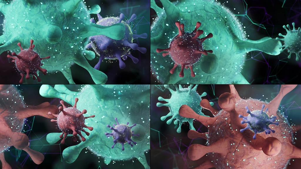 病毒细胞冠状病毒