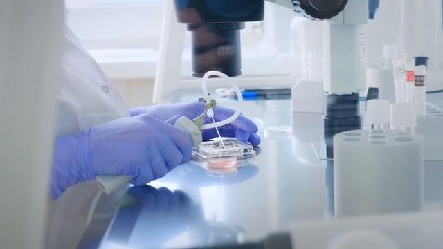 科学家在操作实验样本视频