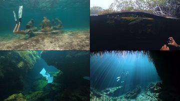 唯美潜水视频素材