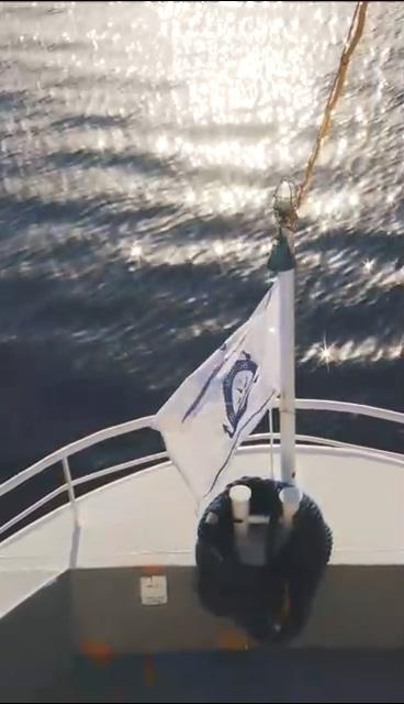 扬帆起航轮船上的旗帜