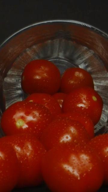 西红柿竖屏视频素材