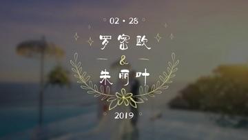 浪漫婚礼字幕小片头PR模板
