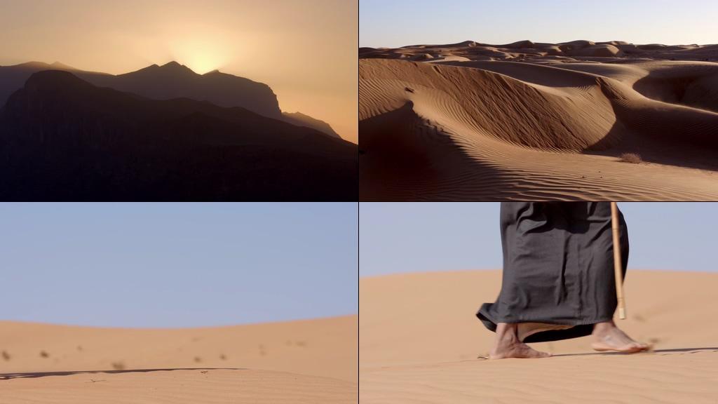 丝绸之路沙漠骆驼视频素材