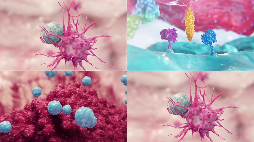 医学3D动画癌症治疗免疫系统蛋白质溶解癌细胞