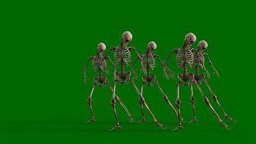 跳舞的骷髅绿幕视频素材