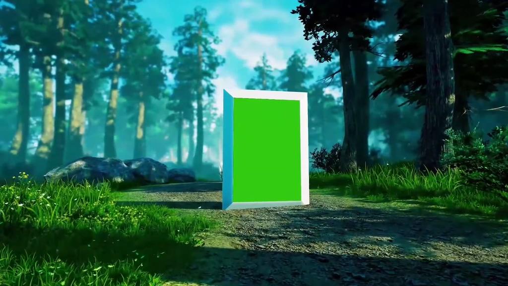 大森林里的相册绿幕视频素材