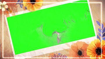 秋天婚礼花朵绿幕视频素材