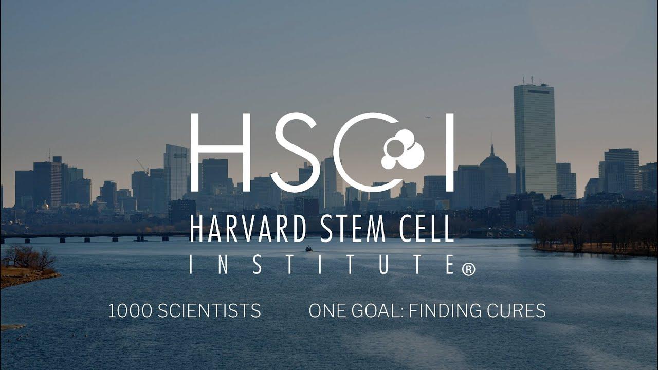 哈佛干细胞研究所突破界限治愈疾病4K视频素材