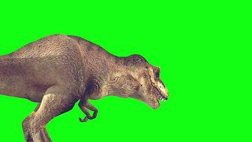 恐龙三组绿幕视频素材