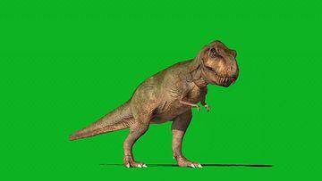 晃来晃去的恐龙视频素材