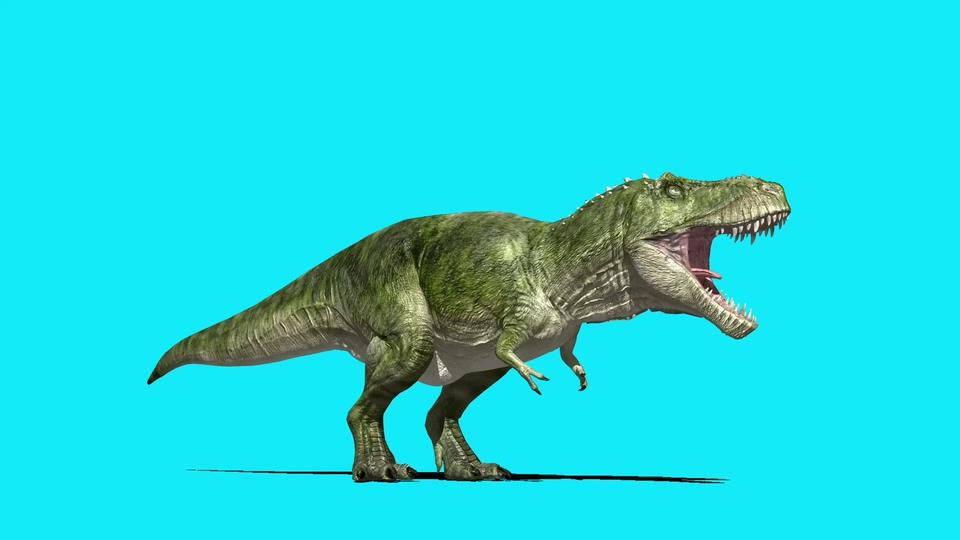 吼叫的恐龙特效视频素材