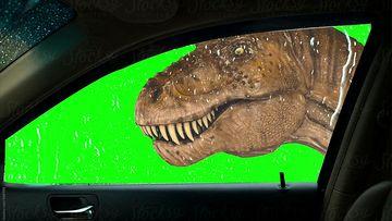 车内视角的恐龙绿幕视频素材