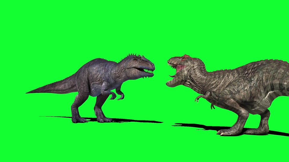 两只恐龙打架前的怒吼视频素材
