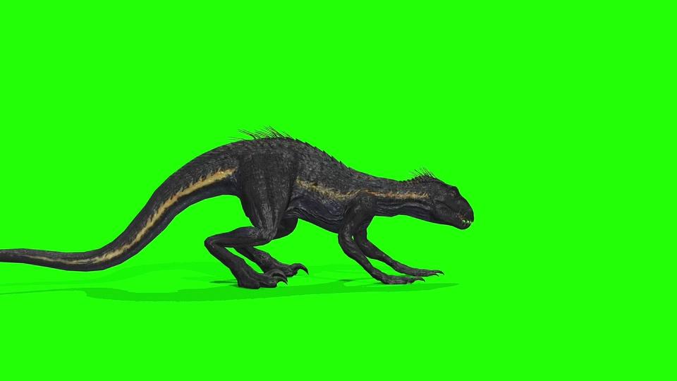侏罗纪公园里的奇怪物种视频素材