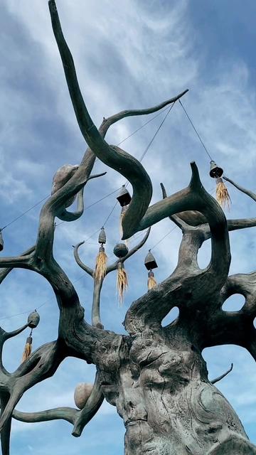 千年古树昏鸦竖屏视频素材