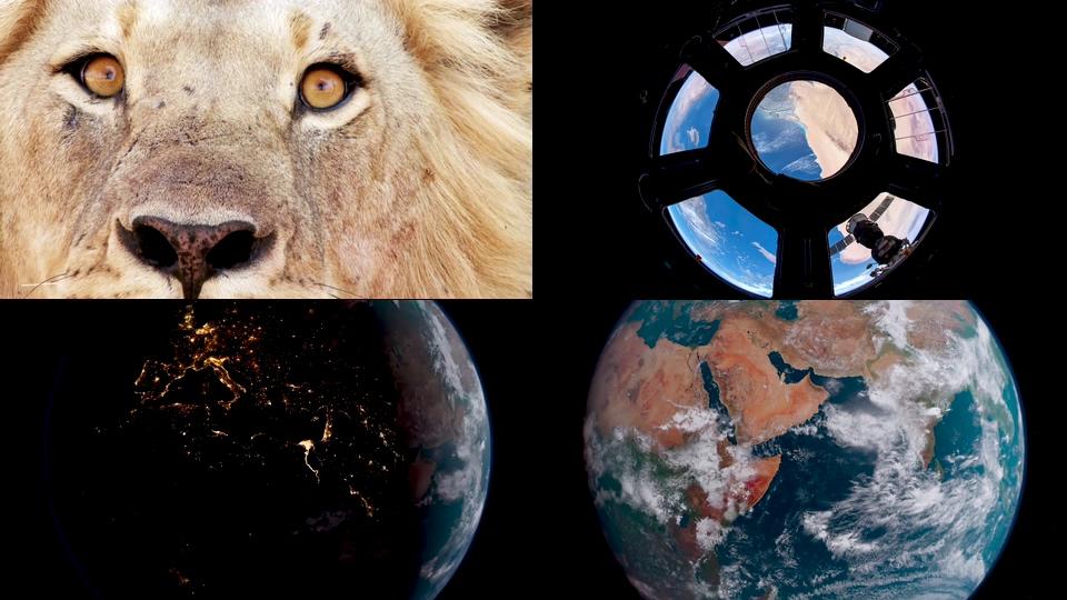 人与动物和睦相处地球家园视频素材