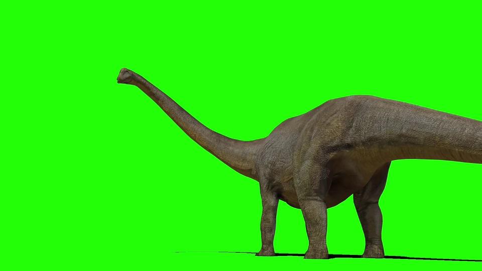 雷龙吃草喝水绿屏视频素材