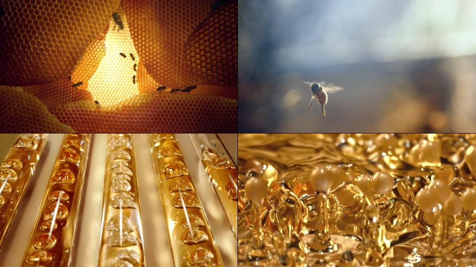 高清蜂蜜视频素材