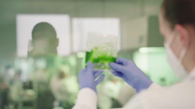科学家在看绿色生物技术视频素材