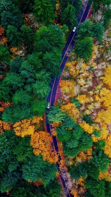 高饱和度弯曲的高速公路竖屏视频