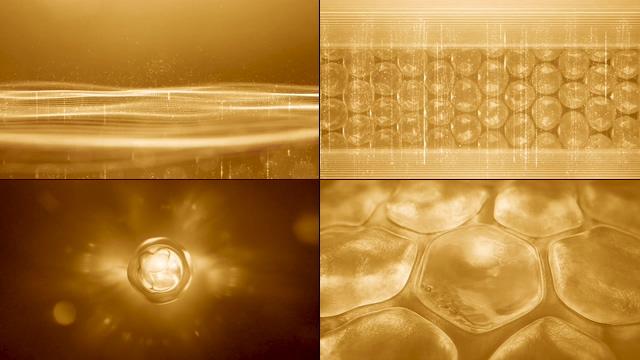 晶莹剔透的细胞修复化妆品视频素材