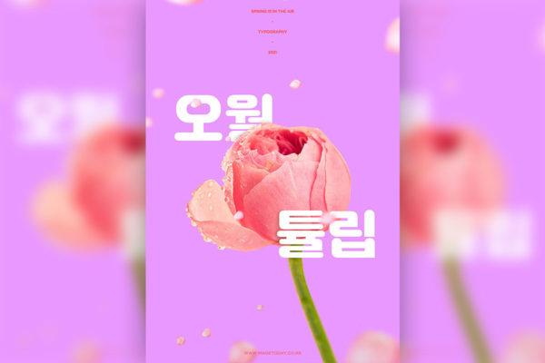 精品粉色郁金香春天&情人节主题海报设计模板psd源文件,编号:82629037