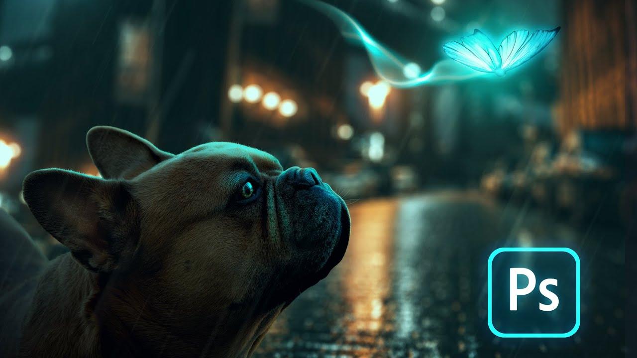 好奇的狗Photoshop视频教程