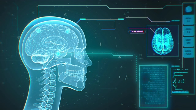 4K头部扫描大脑脊椎HUD动画视频