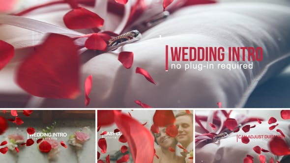 唯美大气玫瑰花瓣婚礼视频AE模板