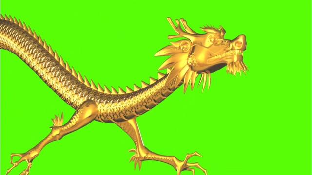 绿幕中国金龙C视频