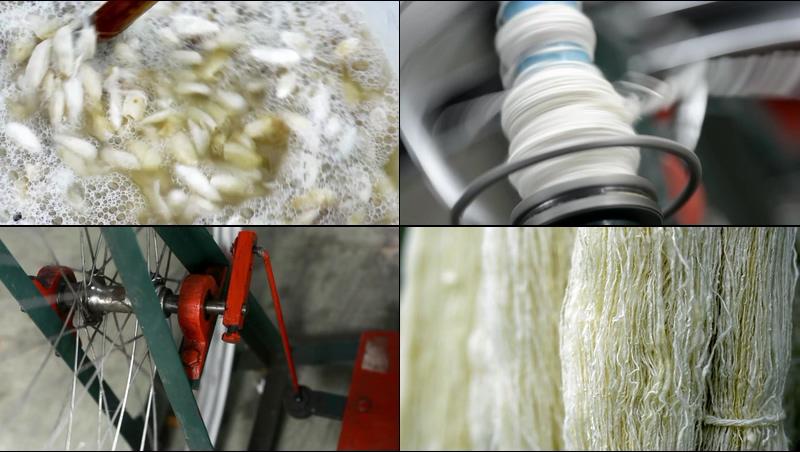 蚕丝制成毛线的过程视频