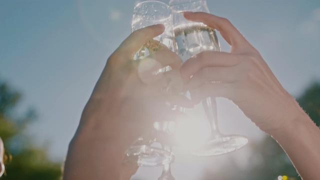 户外香槟碰撞庆祝视频素材