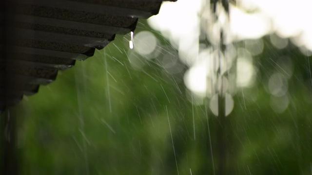 下雨天视频素材