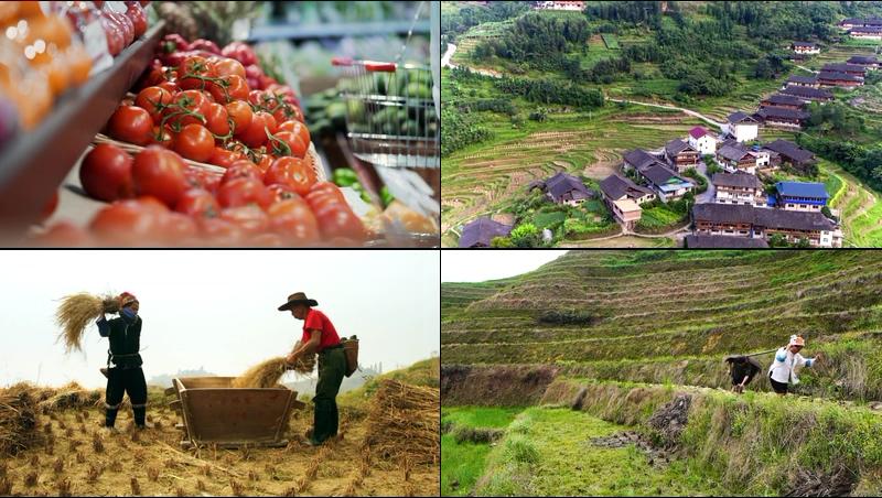 中国新农村建设生活方式一组视频