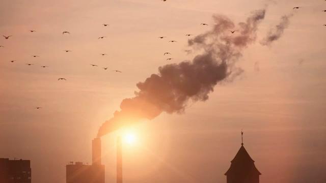 环境污染烟冲黑烟和飞鸟视频素材