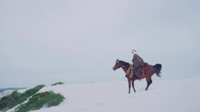 4K沙漠里骑马的人看到绿洲视频素材