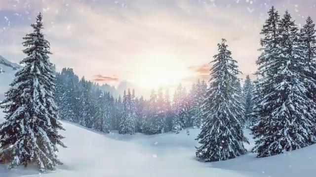冬天雪景背景视频