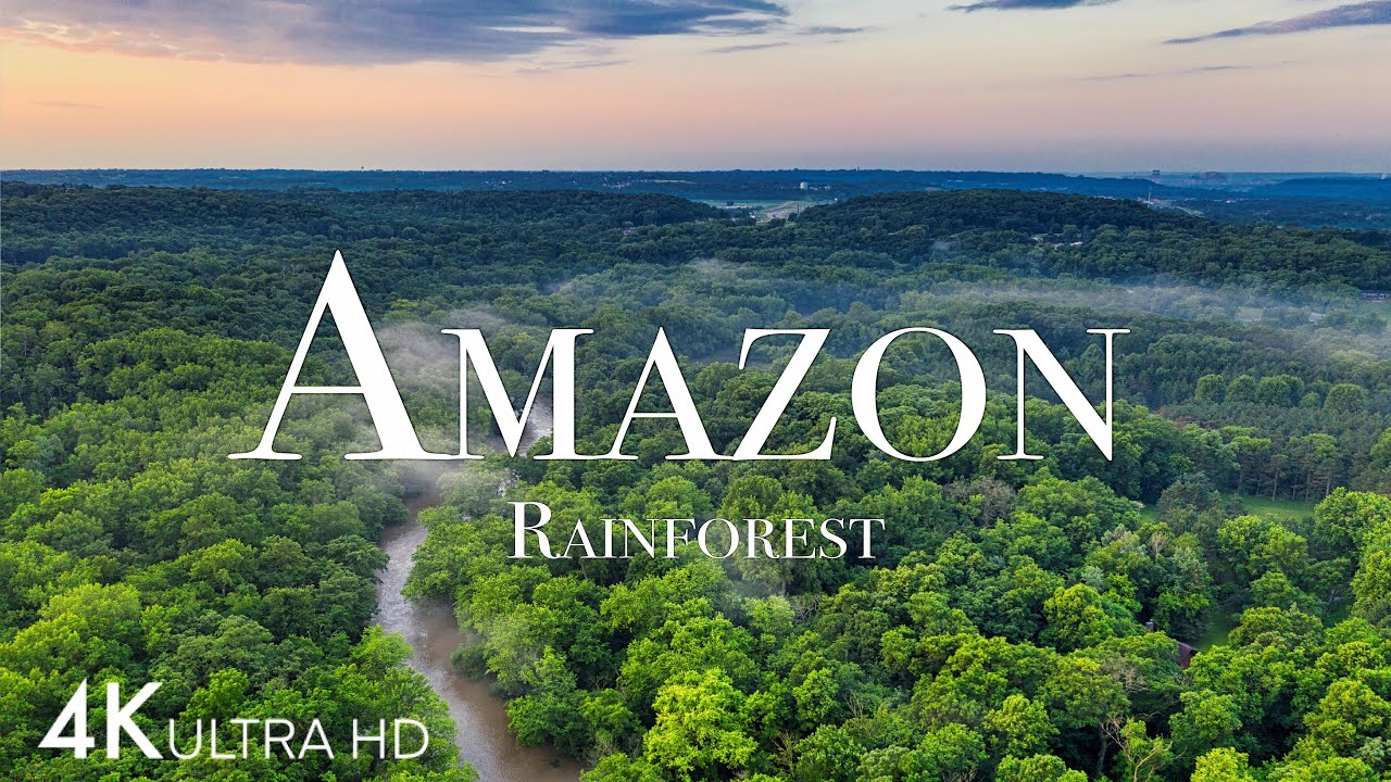 航拍亚马逊4K-世界上最大的热带雨林视频素材